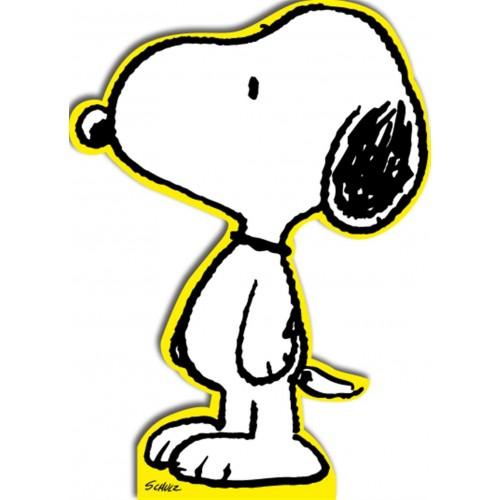 Snoopy Peanuts Birthday Card
