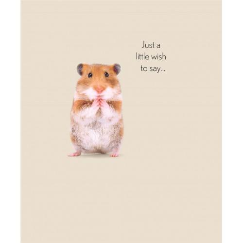 RSPCA Hamster Birthday Card